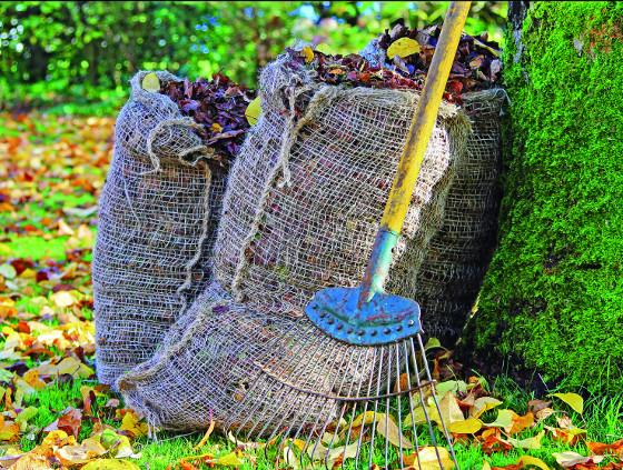 Spadané listí se změní na prvotřídní zeminui v perforovaných pytlích.