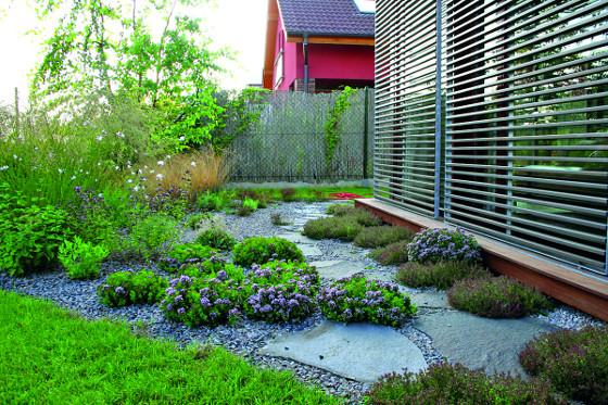 Moderní stavby vhodně doplňují jednoduché zahrady s výraznými rostlinami.