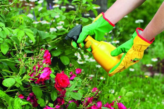 Na malé zahradě si vystačíte s ručním postřikovačem.