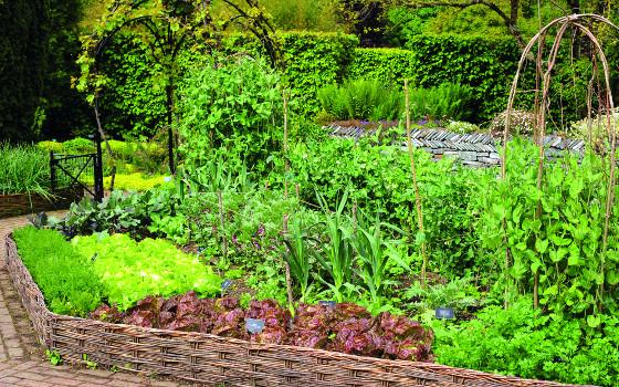 Vzhled zahrady ovlivňuje i podoba obyčejných podpěr.