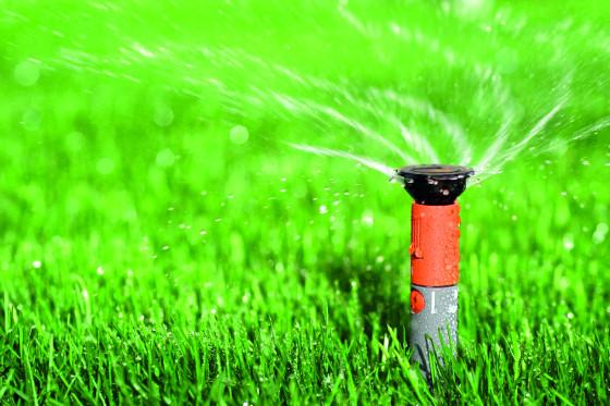 Automatická závlaha je ideální do trávníku, který bývá na přísun vody nejnáročnější.