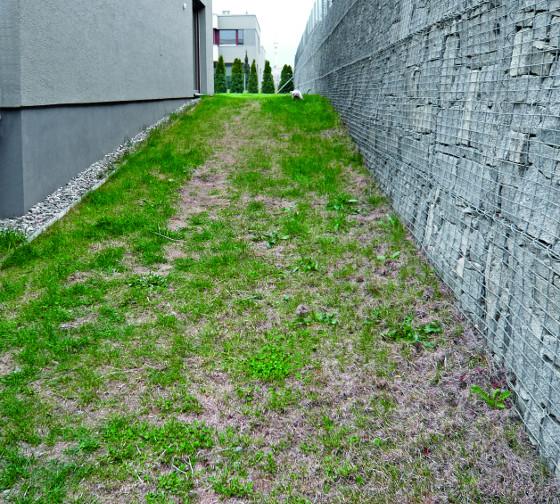 Vsoučasné době je na ploše založen provizorní trávník, se kterým se do budoucna nepočítá, neboť se mu v těchto podmínkách nedaří. Největším problémem je poměrně nekvalitní půda tvořená zčásti ornicí namíchanou spodorničím, je jílovitá svysokým obsahem kamenů. Dlouhý úzký pás se nachází mezi domem a gabionovou stěnou, která plní funkci opěrné terénní zdi.