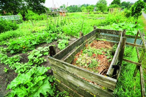 Špatné uspořádání zahrady vpraxi bývá mnohdy patrné v její užitkové  ásti. Vše, co potřebujete pro její údržbu, musíte mít blízko. Na českých zahradách ovšem bývá kompost poměrně daleko od udržovaných záhonů. Nemusíte ho schovávat někam do kouta, lze ho pohledově odclonit například od okrasné zahrady. Pamatujte, že i užitková zahrada může vypadat dobře, a pokud se tak i povede, není nutné ji kompozičně i pohledově izolovat od okrasné části.