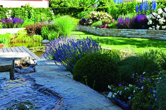 Když Se Město Promění V Anglický Venkov Flóra Na Zahradě