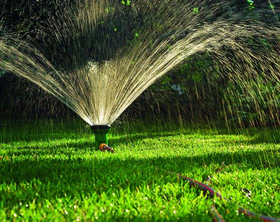 Možnosti Závlahy Zahrady Flóra Na Zahradě